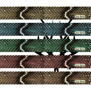 Snake Skin 2