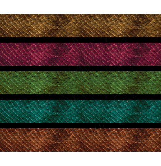 Snake Skin 3